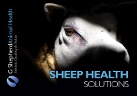 Collect your copy of our New Sheep Health Brochure