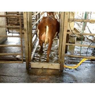 Hoofcount Automatic Footbath