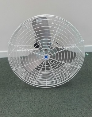 Special Offer on Parlour Fan. Last one in stock.