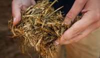 Livestock Event 2014: Seven steps to cutting forage waste